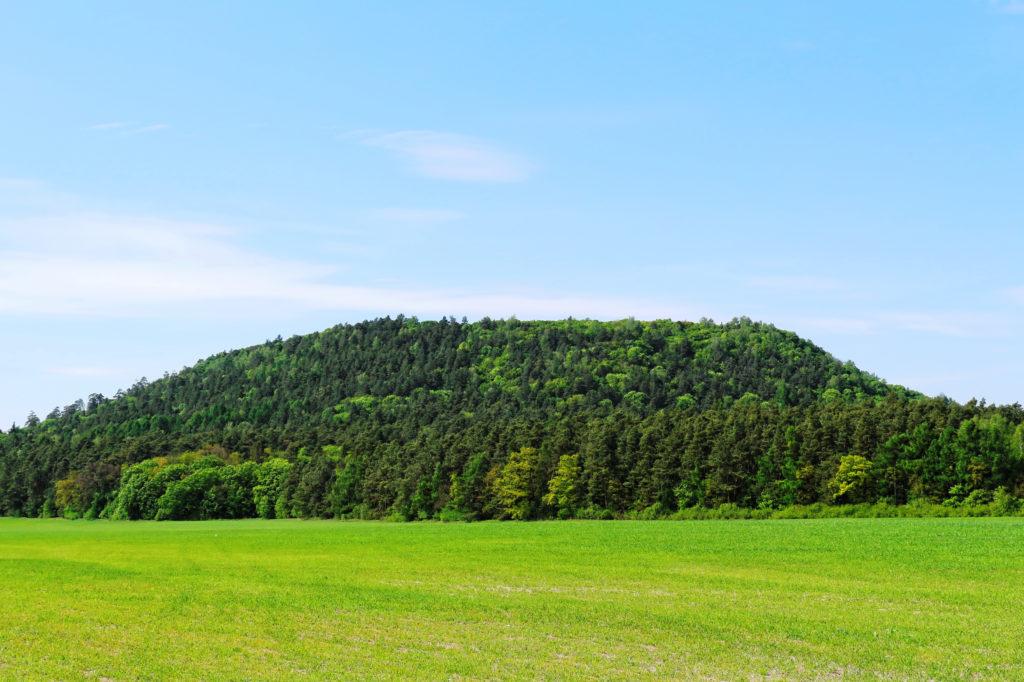 Кременецких гор Тернопольской области