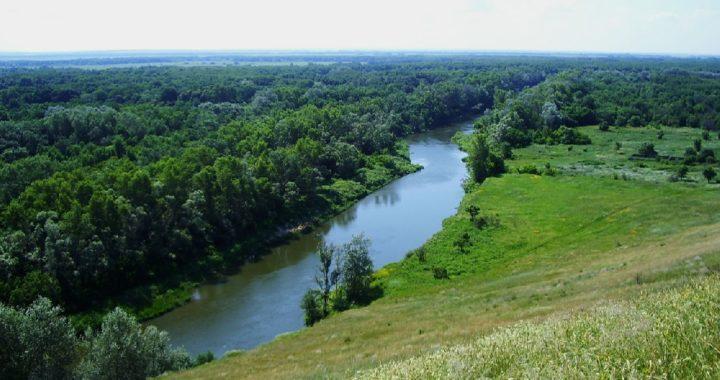 Saratov region nature reserves on air on September 29 - October 4, 2020