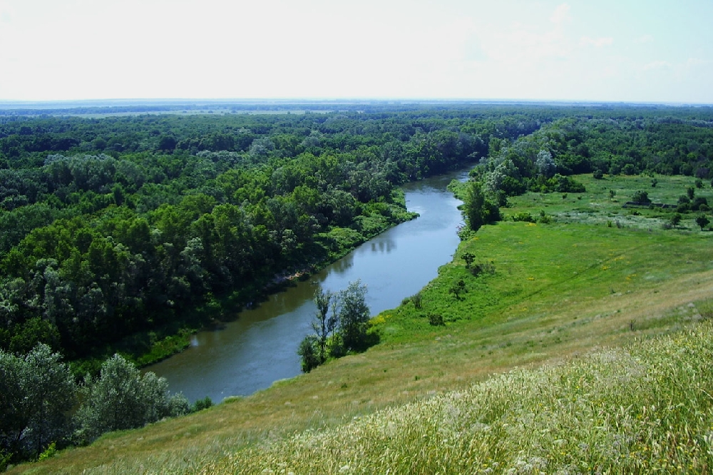 Saratov region nature reserves on air on September 29 - October 4, 2020